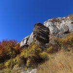A stone mushroom