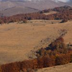 Autumn in Ponor mountain