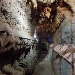 The Museum of Wine in Melnik