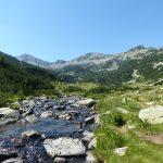 The river Glazne