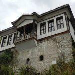 Melnik's house