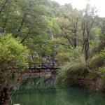 Zlatna panega river